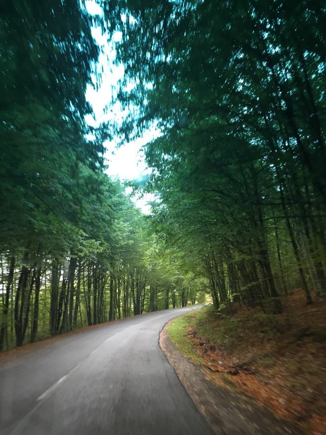 Gabriela Simion Excursie in Covasna Drumuri De Munte