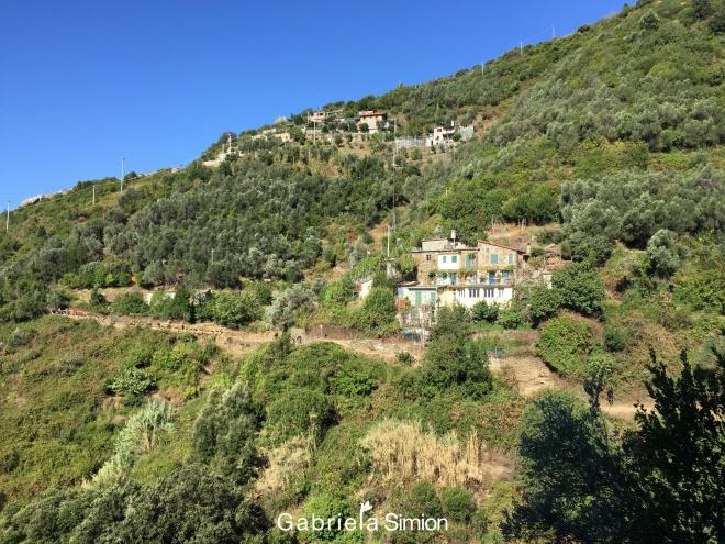Vacante Pentru Plimbareti Cinque Terre Italia