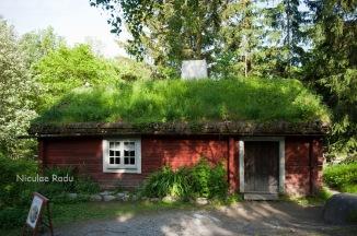 natura-ne-zambeste-suedia-stockholm-skansen