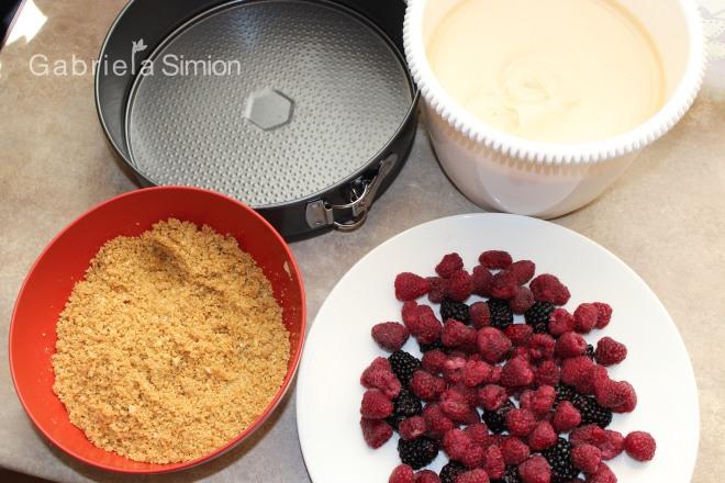 Tort De Tiramisu Cu Fructe de Padure Gabriela Simion