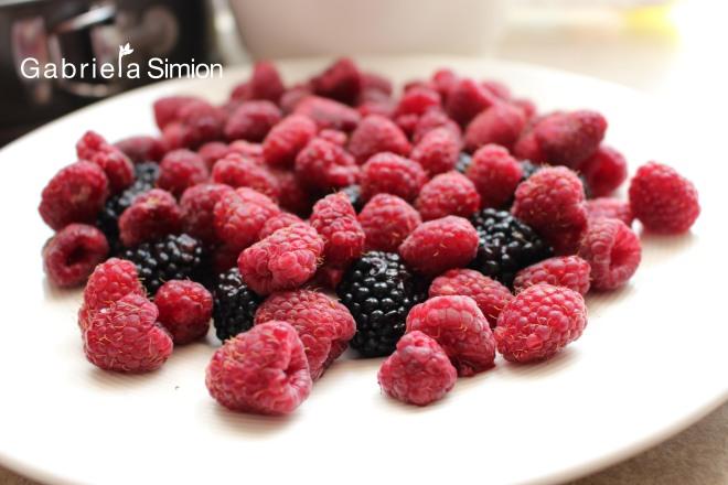 Reteta Tort De Tiramisu Cu Fructe de Padure Gabriela Simion