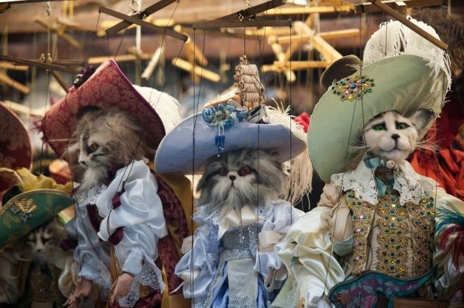 pisici-carnavalul-de-la-venetia-gabriela-simion