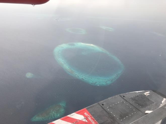 Foto Gabriela Simion Vacanta in Maldive