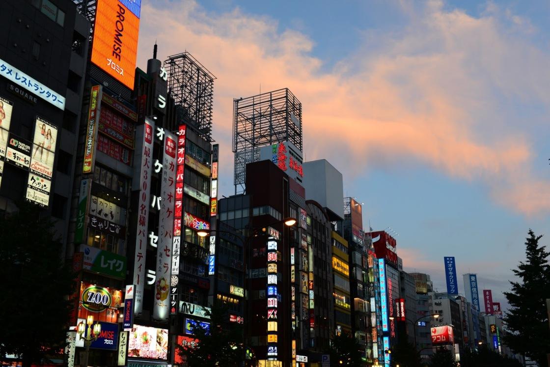 Shinjuku Vacanta in Japonia