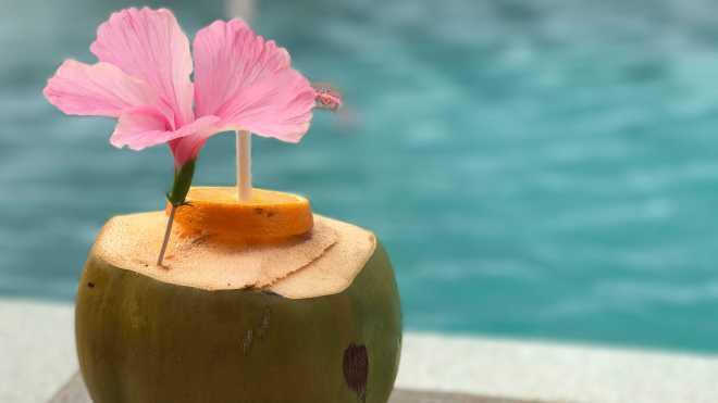 Rasfat, Vacanta Maldive, Gabriela Simion