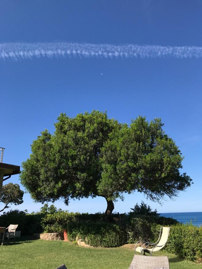 Natura Maremma, Maremma, Toscana, Gabriela Simion